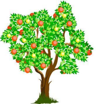 Яблунька і літо