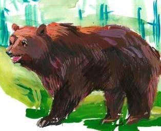 Вдячний ведмідь