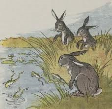 Зайці та жаби