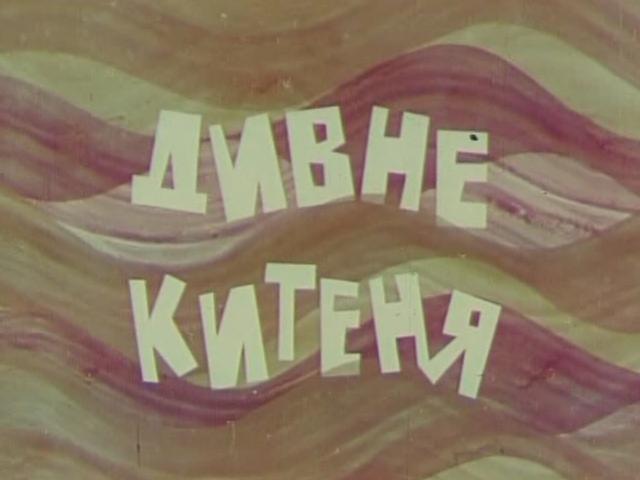 Дивне Китеня (1971)