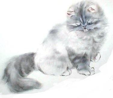Тесля і кішка